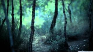Inquisition - Solitary Death In Nocturnal Woodlands Subtitulado Español