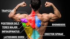 Can't Get a Muscular Back? Just Do THIS!!