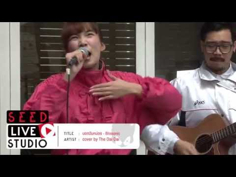SEED LIVE STUDIO - บอกฉันหน่อย - cover by The Dai Dai