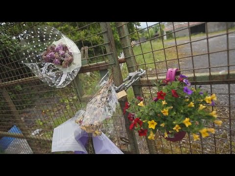 VIDEO: The Ana Kriegel murder trial – An overview of the evidence