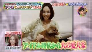 TV出演:歌手 愛内里菜 【垣内りか】 犬のスペシャリスト!に変身 垣内りか 検索動画 7
