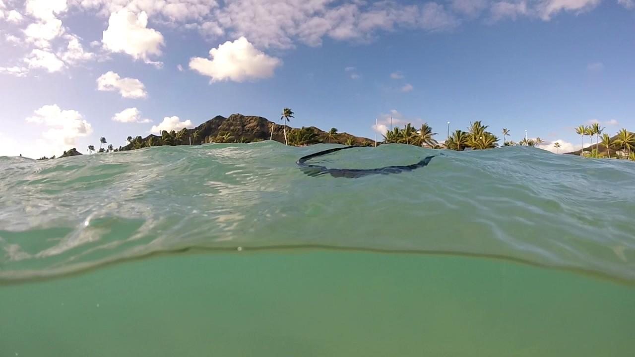 c6544a037f Rheos Gear Floating Sunglasses in Hawaii - YouTube