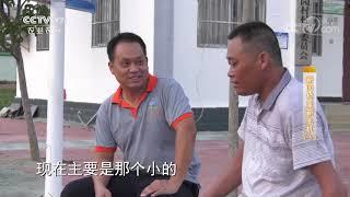 《攻坚日记》 20200702 新园村里新生机(3)|CCTV农业