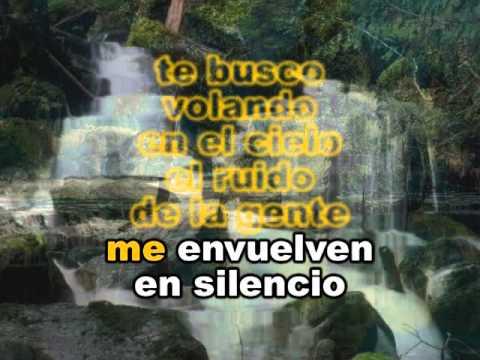 Celia Cruz Te Busco Karaoke