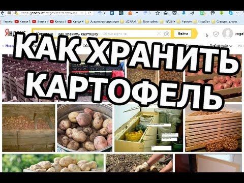 Live4Fun - приколы: фото, видео приколы, смешные истории и