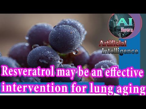 Artificial Intelligence News - Resveratrol may be an effective intervention for lung aging