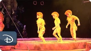 Tumble Monkeys at 'Festival of the Lion King' | Walt Disney World