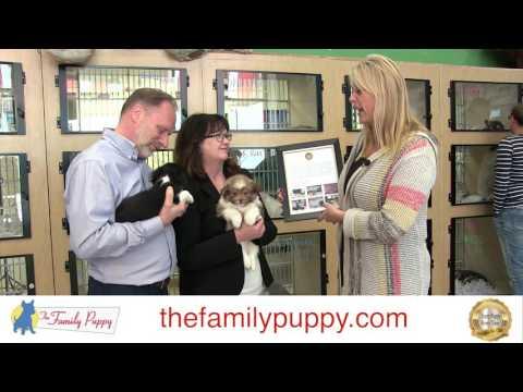 Stuckey Center Donation Award