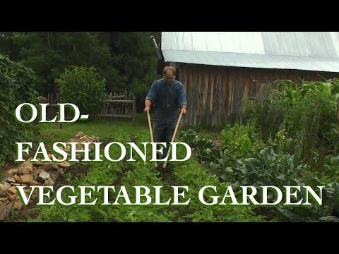 The Vegetable Garden - The FHC Show, ep 16