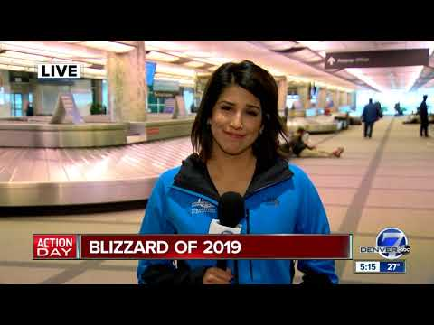 Blizzard of 2019: Traffic, air travel throttled by storm