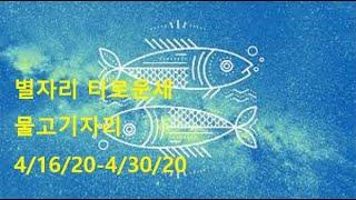 별자리 타로운세:  물고기 자리 4/16/20-4/30/20