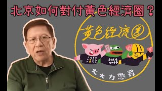 北京如何對付黃色經濟圈-武漢肺炎最新狀況-蕭若元-蕭氏新聞台-2020-01-15