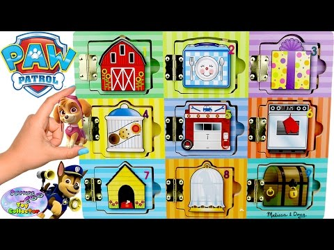 Paw Patrol Best Learning Videos For Children Kids Colors Numbers Surprise Egg and Toy Collector SETC