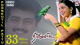 Poonkuyil Pattu Pudichirukku  Song | Nee Varuvai Ena Movie | Ajith | Devayani | SA Rajkumar