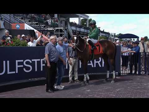 Gulfstream Park Replay Show | February 23, 2020