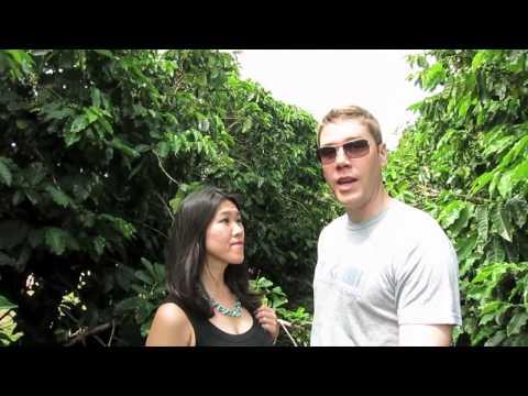 Kauai Coffee Plantation in Hawaii
