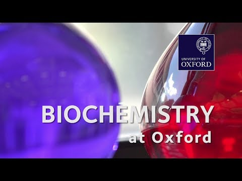Biochemistry (Molecular And Cellular) At Oxford University