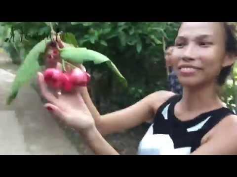 Trip to Vinh Long - Janny.tv
