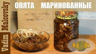 Консервация  Опята маринованные. Отличная закуска из грибов. Мальковский Вадим.