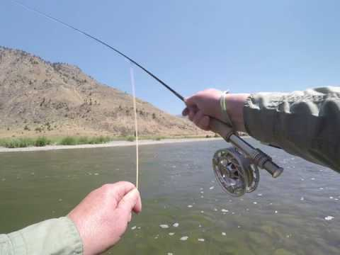 Yellowstone River Hoppers
