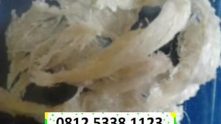 katalog, catalogue, sriti, harga per kilo, sarang burung, Sarang Burung walet