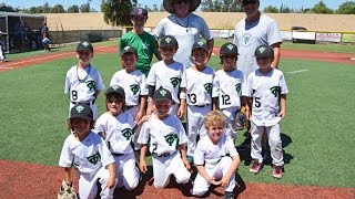 Thousand Oaks Little League 6U Tournamant August 2015