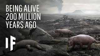 What If You Were Alive 200 Million Years Ago