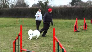 Agility Training With Barrie James