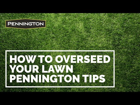 Tips from Pennington for Seeding or Overseeding Your Lawn