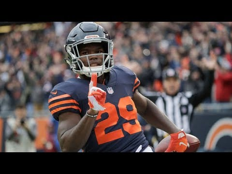 Tarik Cohen | 2018-19 Highlights ᴴᴰ
