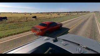 Dodge 360 Test Drive
