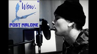 """Post Malone - """"Wow."""" - Cover by Fox & Raccoon"""