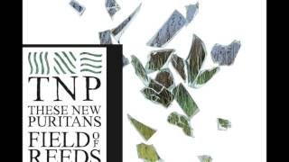 These New Puritans - The Light in Your Name