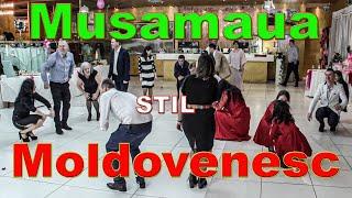 Download lagu Musamaua in Stil Moldovenesc | Petru Ursache Evenimente