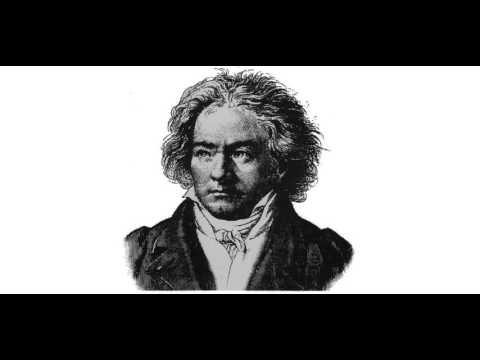 """Ludwig Van Beethoven - Symphony No. 5 In C Minor, Op. 67, """"Fate"""" Allegro Con Brio"""
