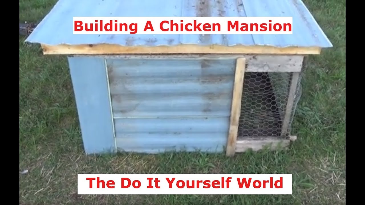 Making A Wind Proof And Rain Proof Chicken Mansion