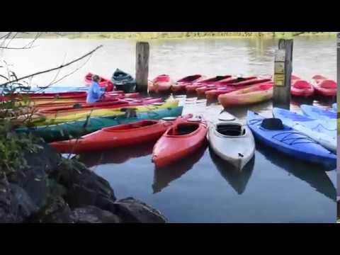 WaterTreks: Kayak: Jenner Estuary Kayaking