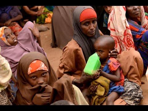 الجوع يهدد حياة أكثر من 120 مليون شخص حول العالم  - نشر قبل 2 ساعة