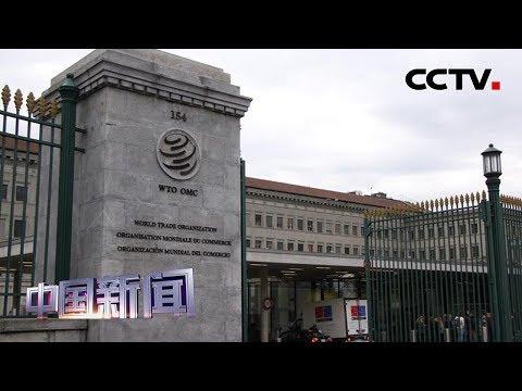 [中国新闻] WTO2019年度