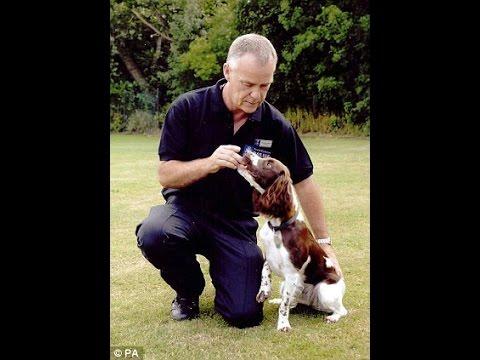 Case Madeleine McCann - Cadaver Dogs Eddie & Keela
