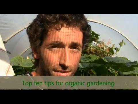 Organic Gardening Tips  With Video