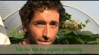 Organic Gardening - Top Ten Tips