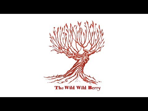 Sam Lee, Daniel Pemberton — The Devil & The Huntsman [Homework Edit] (Wild, Wild, Berry)