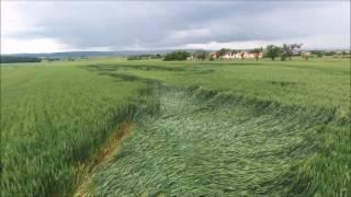 Dégât des vents 2016 sur culture | wind damage | Lorraine | Drone | HD