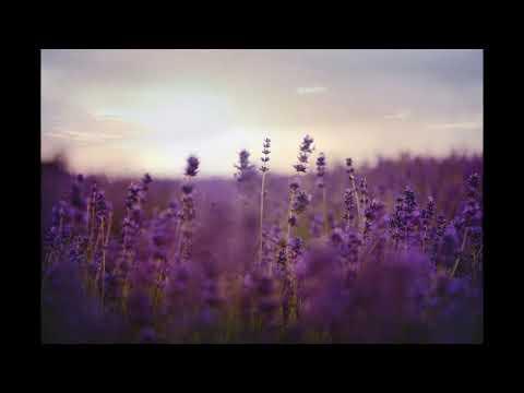 "Cosby ""Milestone"" [Charming Horses Remix]"