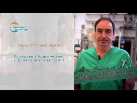 Voices of Animal Health  - A Vet's view - Full Interview