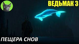 Ведьмак 3 - Скрытый квест - Пещера снов