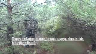 Çulluk Avı 2013 ÇAN (Full)Woodcock Hunting Pointer and Setter...