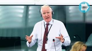 A clash between what the EU wants and what nations need - Brexit Party MEP Matthew Patten