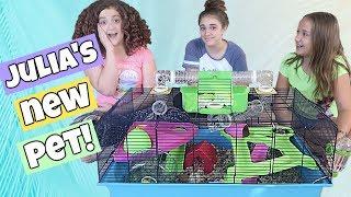 A New Pet!  Julia's Birthday Surprise + HUGE Cage Set Up!